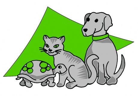 Logo von Dr. Froschauer Irene
